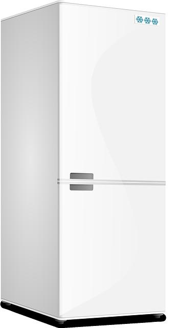 Chłodnia, drzwi chłodnicze i liczne zastosowania