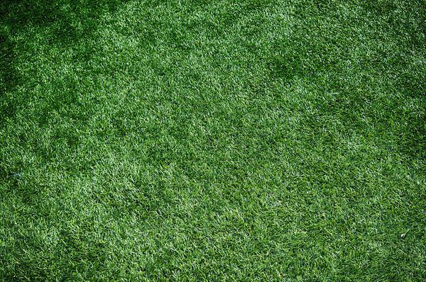 Read more about the article Gdzie sprawdzi się wykładzina z trawy?